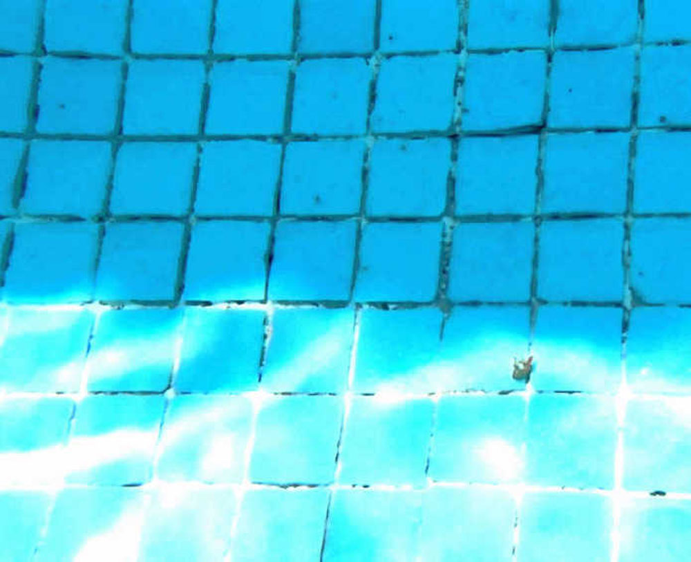 Influence produits eau piscine